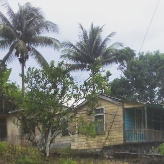 jamaica travel homes houses
