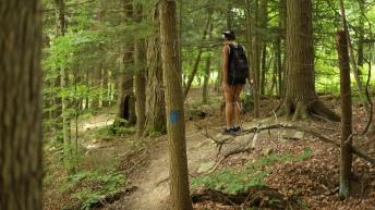 salt spring state park new milford hiking trail