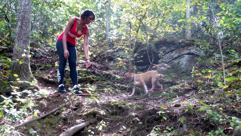 hiking trails roswell mill atlanta
