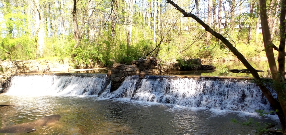 hiking trail lullwater park atlanta