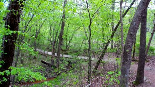 hiking trail travel explore sweetwater creek state park bridge