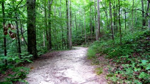 Hiking Trail at Henderson Park