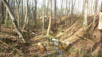 19-clayton-county-international-park-stream-2