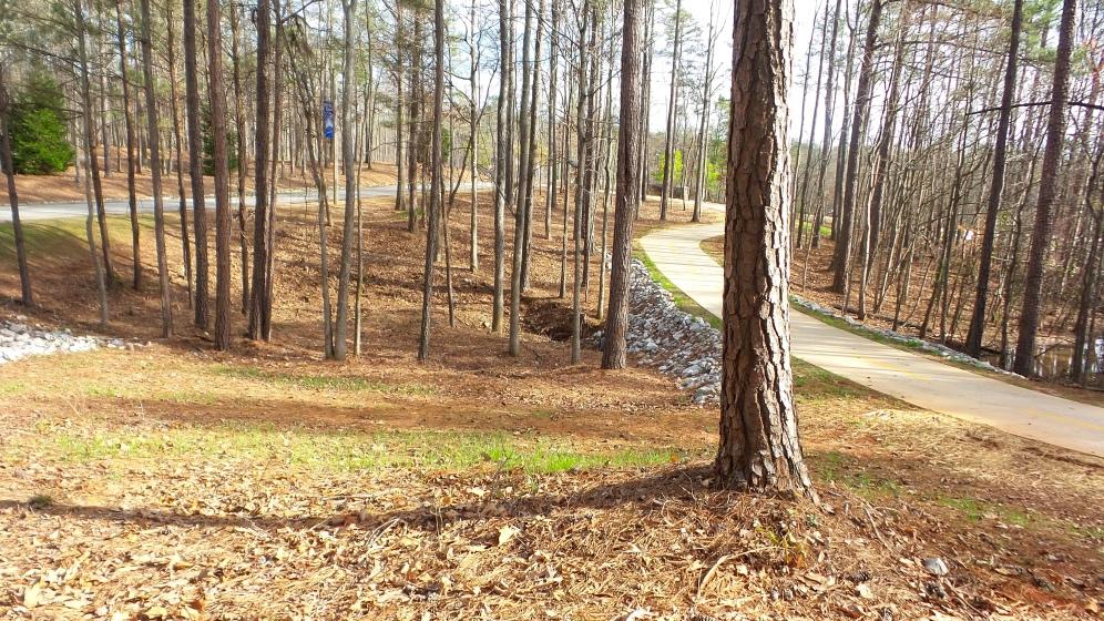 36-hiking-trails-in-georgia