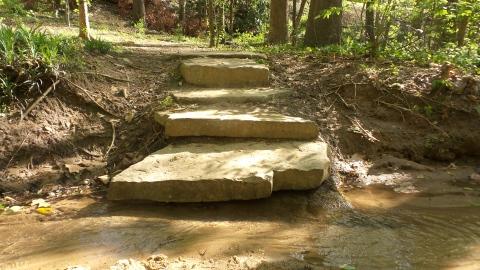 10 Steps on Depende Park Trail