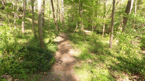 13 Deepdene Park Hiking Trail Georgia
