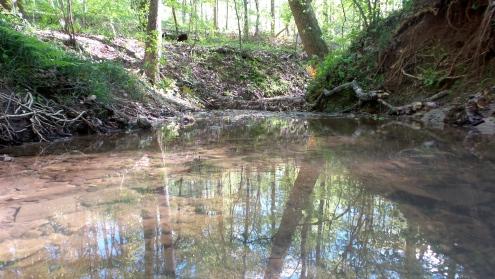 16 Deepdene Park Trail Stream