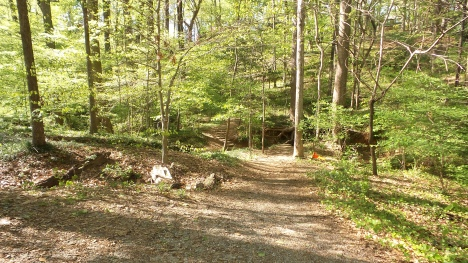 22 DeepdenePark Hiking Trail Georgia