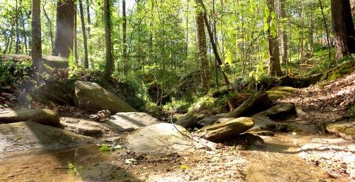 30 Depende Park Stream