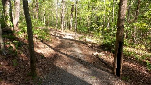 40 Deepdene Park Hiking Trail