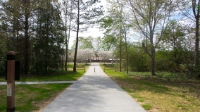 Clayton County Hiking Spring Blossom Trail