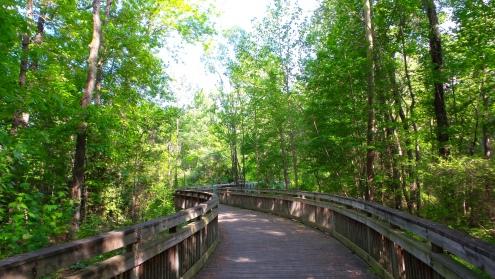 13 Jesters Creek Georgia Boardwalk