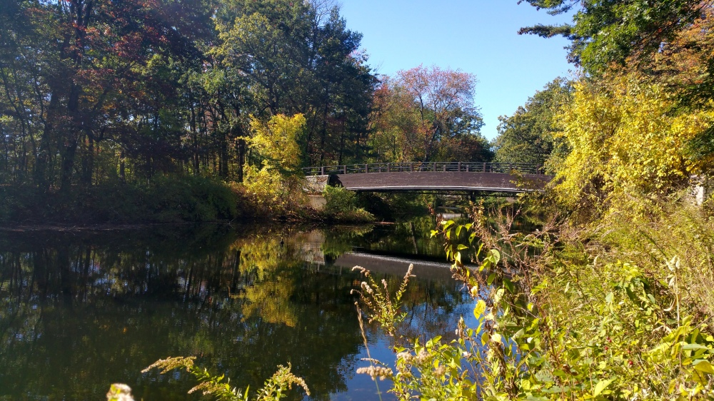 15 Mine Falls Park Bridge.jpg