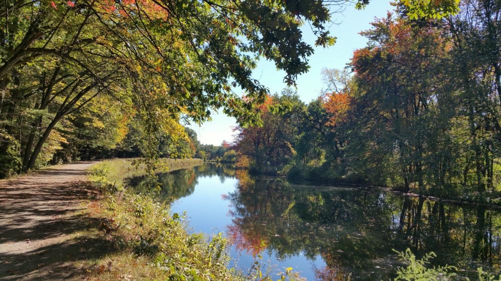 16 Mine Falls Park Fall.jpg