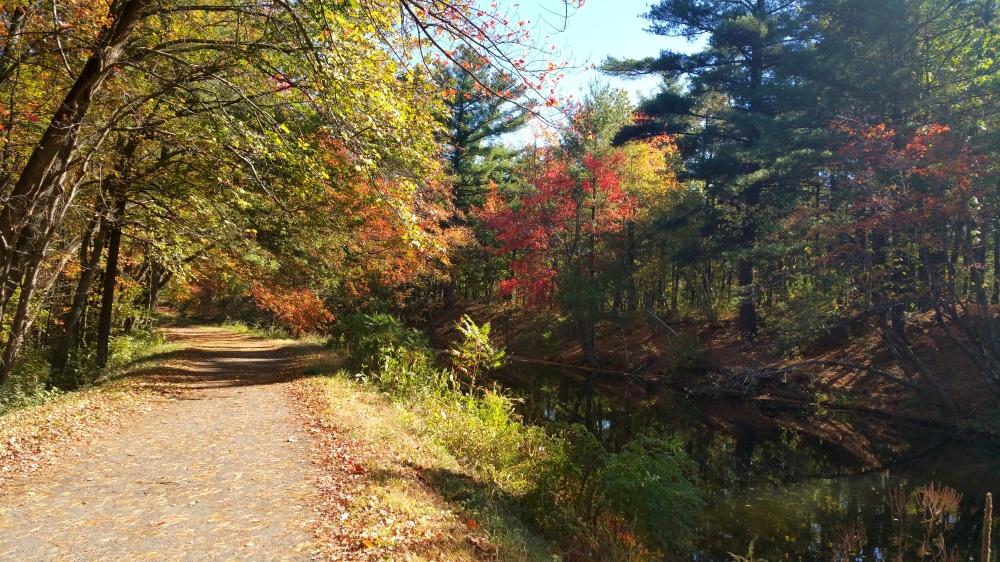17 Mine Falls Park Hiking Trail.jpg