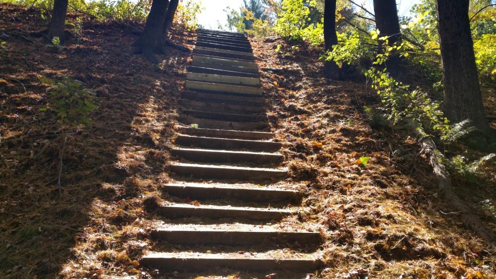 18 Mine Falls Park Steps.jpg