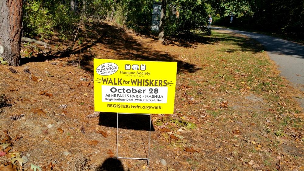 5 Walk for Whiskers.jpg