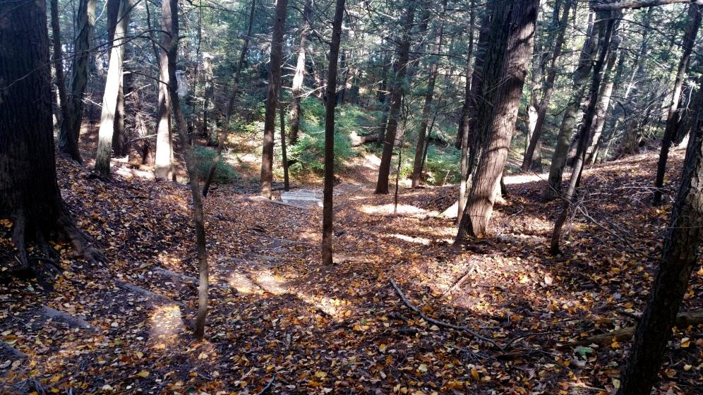 13 Deer Jump Reservation Steps