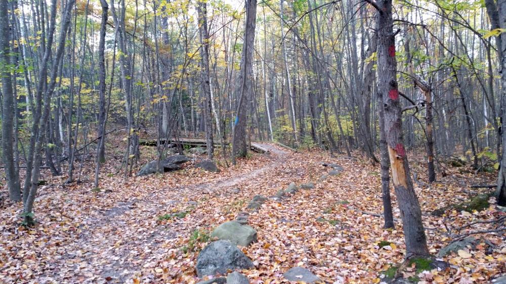 26 Horse Hill Nature Preserve Autumn