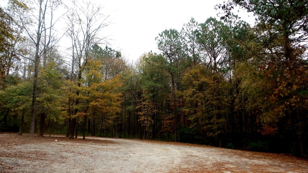 2 Constitution Lakes Georgia.jpg
