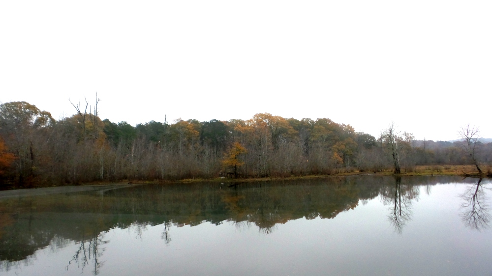 6 Constitution Lakes Waterscapes.jpg